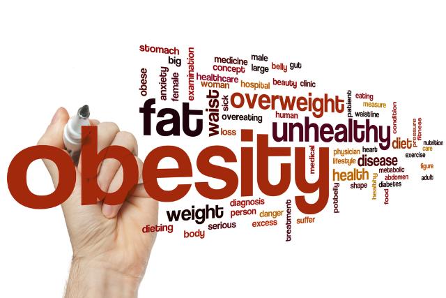 obesity in France