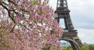 tips for hosting visitors to Paris