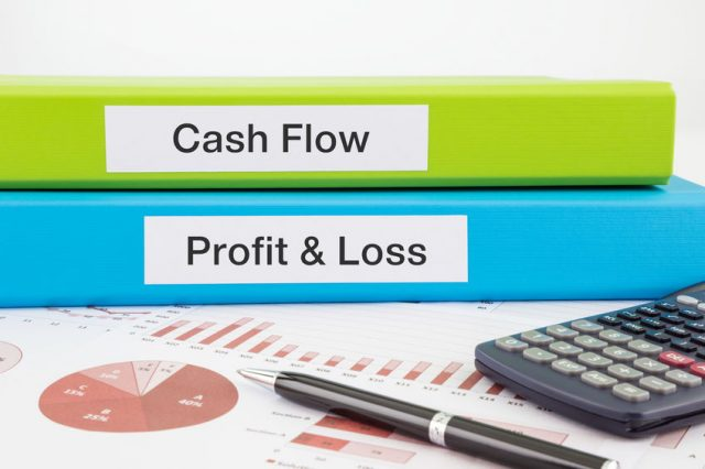 cash flow and profit statements